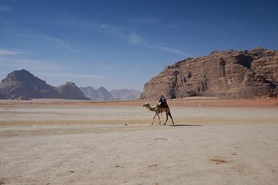 A Bedouin and camel at dawn, Wadi Rum, Jordan