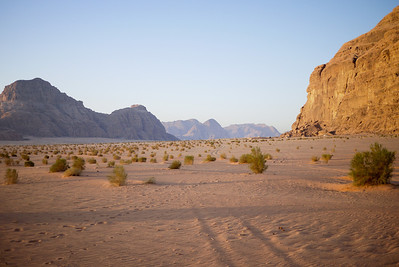 Pastel colors tint the desert and rocks for sunrise in Wadi Rum, Jordan
