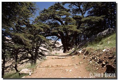2707_MEA-1-0002-Lebanon
