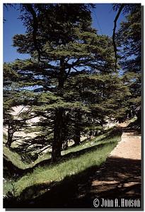 2706_MEA-1-0001-Lebanon