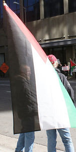 Jewish National Fund protest '13 (36)