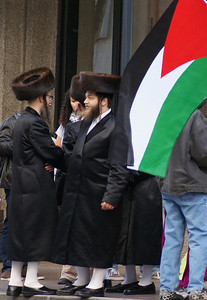 Jewish National Fund protest '13 (11)