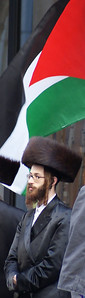 Jewish National Fund protest '13 (12)