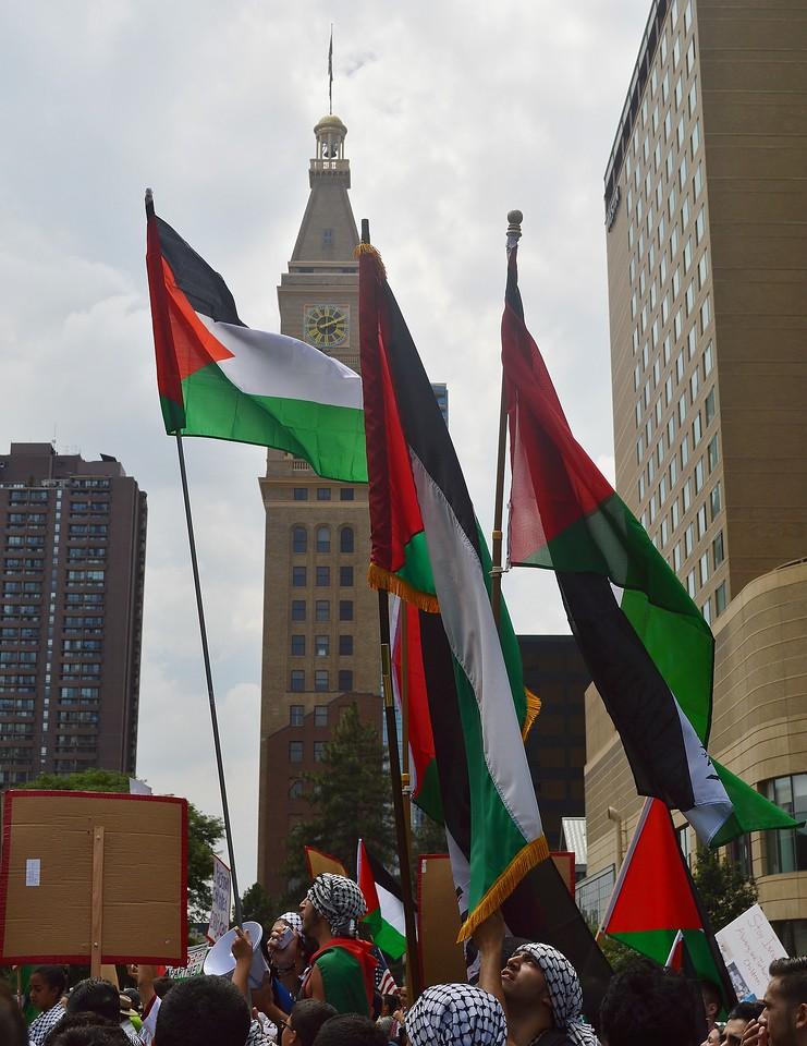 palestinian-protest-Dnvr3-24