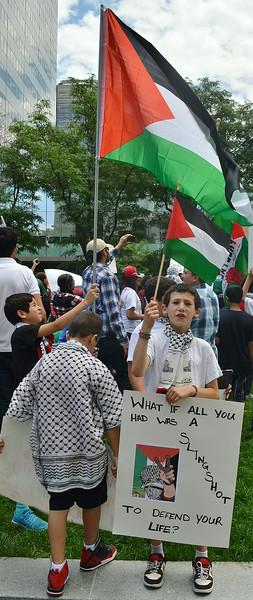palestinian-protest-Dnvr3-22