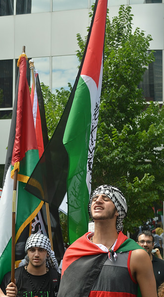 palestinian-protest-Dnvr3-29