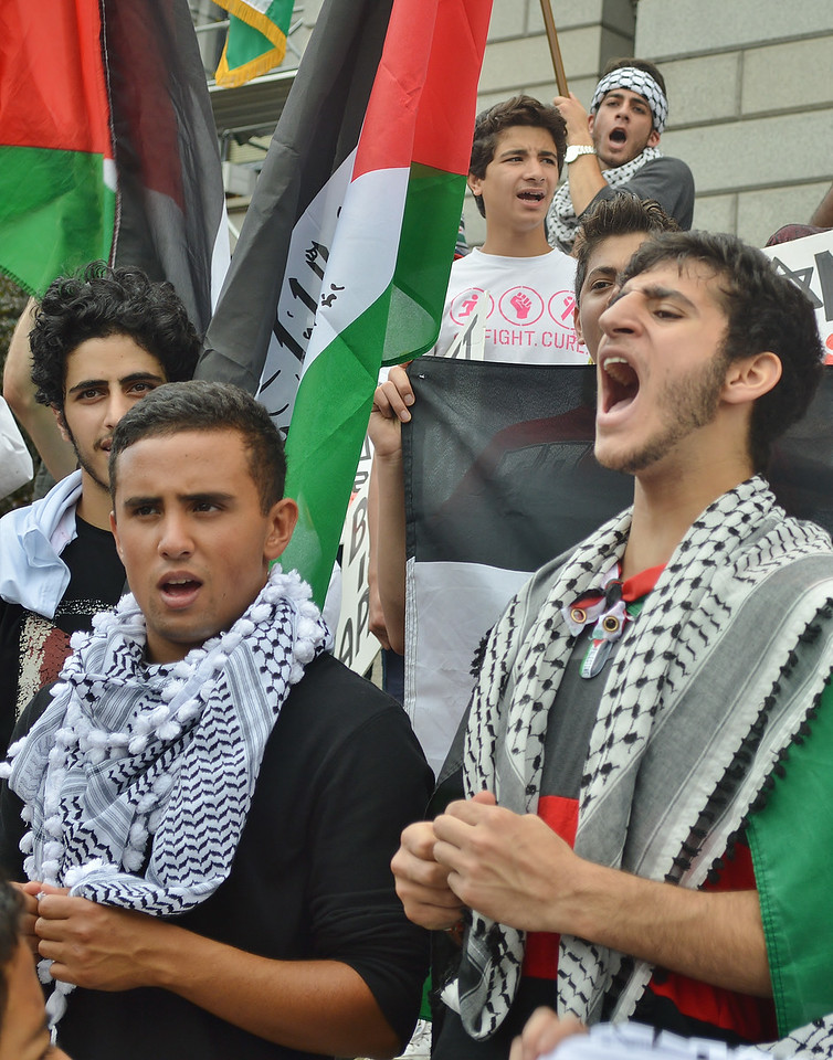 palestinian-protest-Dnvr3-56