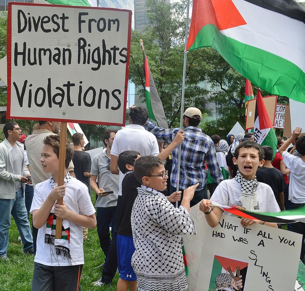 palestinian-protest-Dnvr3-21