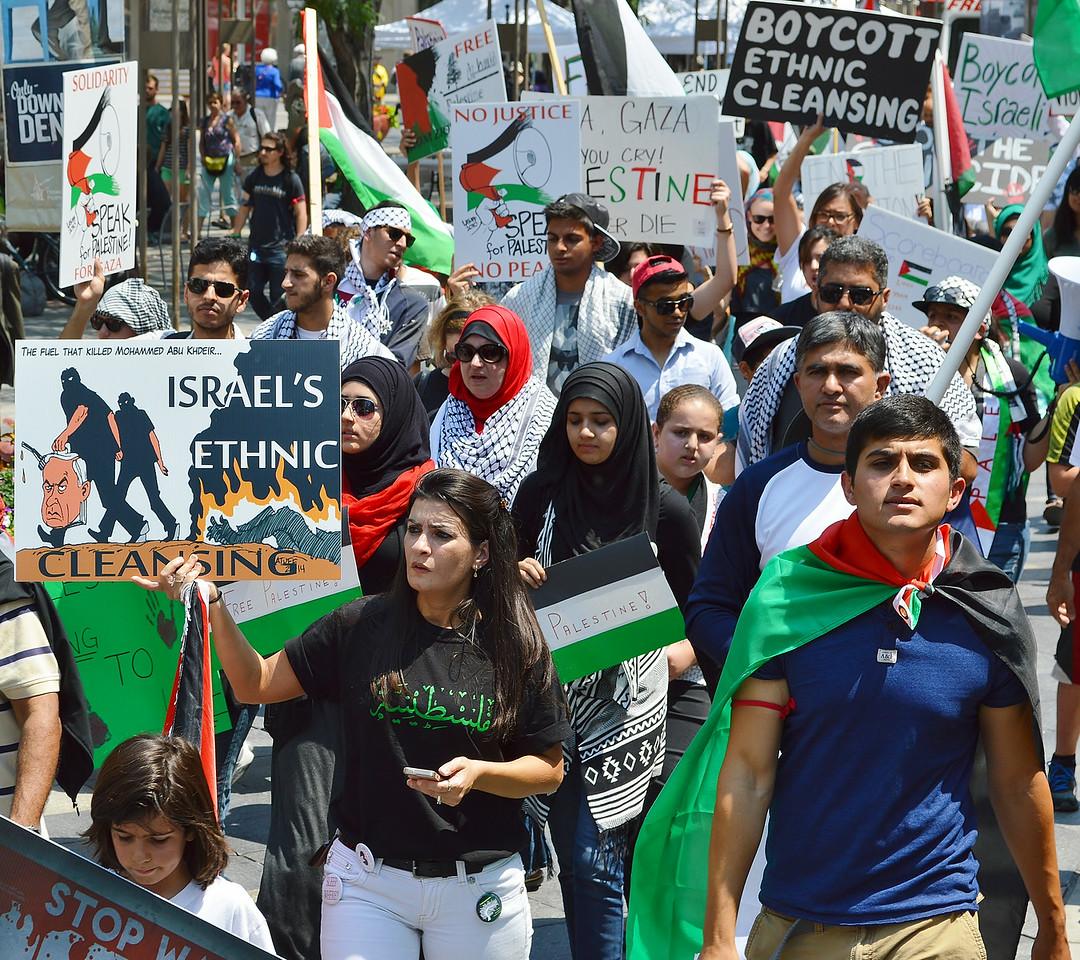 palestinian-protest-Dnvr4-18