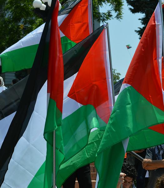 palestinian-protest-Dnvr4-3