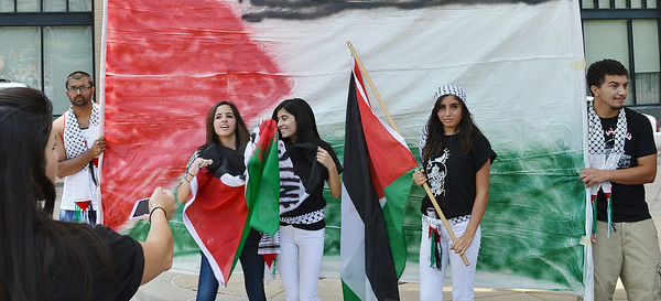 palestinian-protest-Dnvr4-22