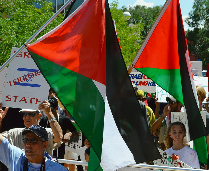 palestinian-protest-Dnvr5-11