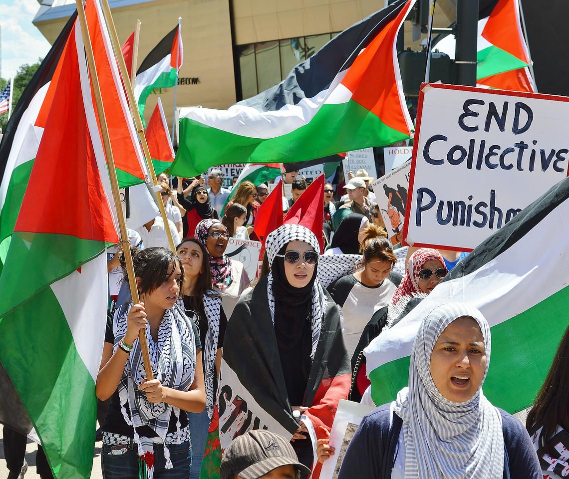 palestinian-protest-Dnvr5-16