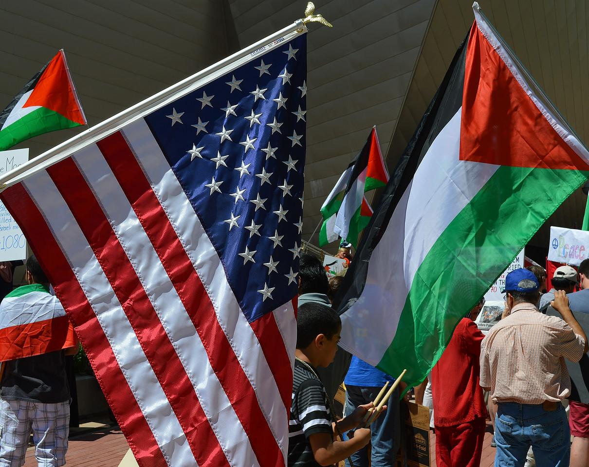 palestinian-protest-Dnvr5-14