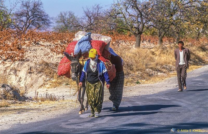 Woman / Donkey & Husband<br /> Ortahisar, Turkey