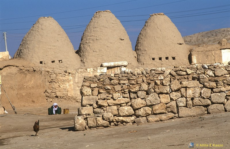 Beehive Mud Houses<br /> Harran, Turkey