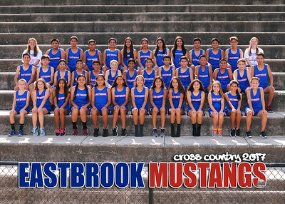 2017 Eastbrook Middle Cross Country