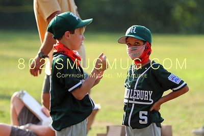 Middlebury Little League Baseball 2020