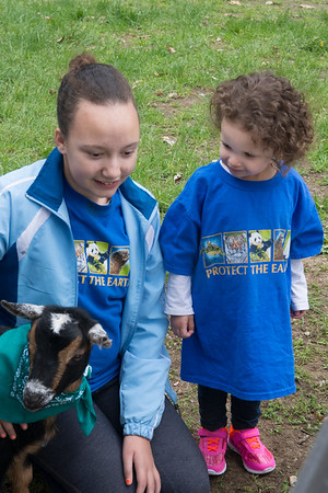 JIM VAIKNORAS photo Jaelyn Disla, 12, and her sister Juliana,2, meet Mayfly the goat from Moon Shadow Farm at Creighton Pond Earth Day celebration in Middleton.