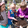 JIM VAIKNORAS photo Anastasia Ward, 7, Molly Hazelwood,6, and Olivia Slater,7, all from Girl Scout Troop 62728 all check out some worms at Creighton Pond Earth Day celebration in Middleton.