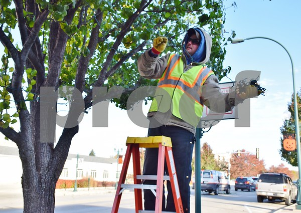 Kurt Sanderson, a laborer with the Sycamore Public Works Department, decorates a tree in downtown Sycamore during the early morning hours of Nov. 10. This year, the Sycamore Public Works Department placed more than 600 strands of lights on 69 trees, hung Christmas banners and 54 wreaths on light poles and decorated the two trees in front of the DeKalb County Courthouse.