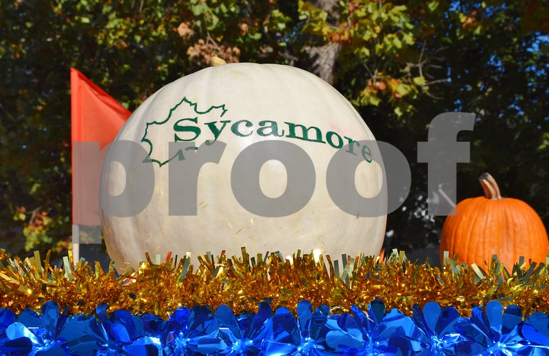 The 56th annual Sycamore Pumpkin Festival Parade on Sunday featured about 122 entries, including floats created by local businesses, banks, sports teams, church groups, dance troupes and nonprofit organizations and 16 marching bands. An estimated 40,000 to 50,000 people watched the parade. This decorated pumpkin was one of many on Tate & Lyle's parade float.