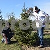 On Sunday, Ron Eastman of Tinley Park (right) and his grandson Michael Eastman, 15, of Mount Greenwood, chopped down a tree at Camelot Christmas Tree Farm in DeKalb. Eleven of their family members visited the farm to purchase three Christmas trees.