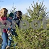 Sycamore residents Andrew George, Lucy Pickerill and their 6-month-old son Oliver look at the branches of a tree at the Camelot Christmas Tree Farm in DeKalb on Sunday. To celebrate their son's first Christmas, the family chose to visit the farm to find and bring home a live tree.
