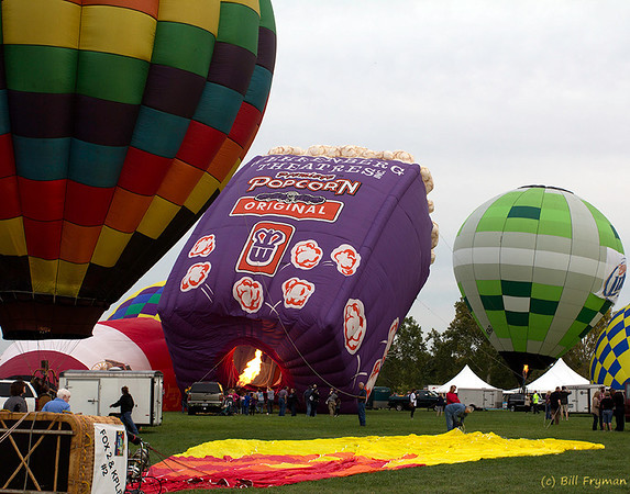Forest Park Balloon Glow 2012