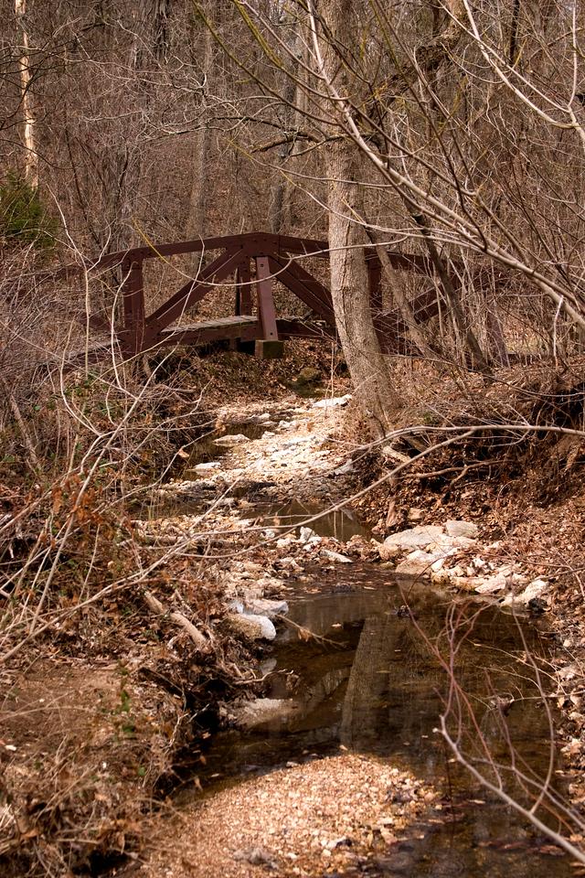 Bridge in Babler Park