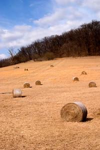 Hay, near Hannibal