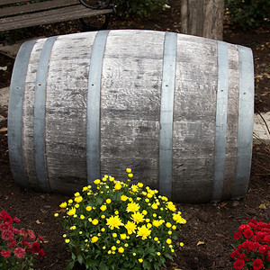 Barrel and flowers
