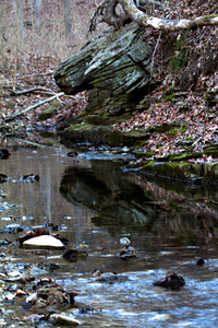 Reflections in a small stream along Hickory Ridge Trail, Powder Valley Conservation Nature Center.