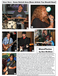 December 2012 Hear Here - Some Detroit Area Blues Artists You Should Hear!