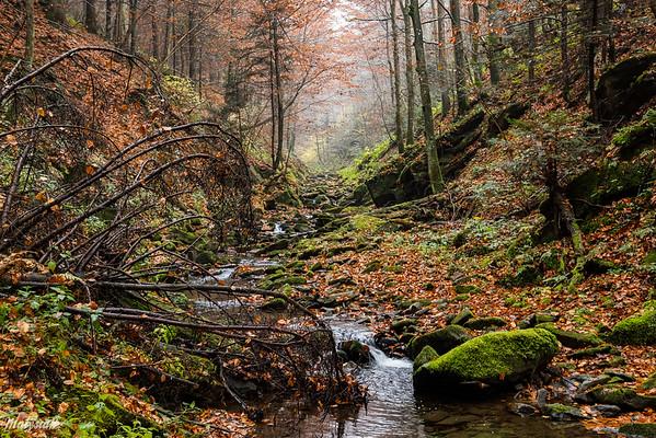 Potok Hulski, Bieszczady ©Mateusz Matysiak