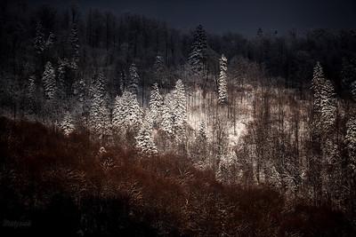 Reflektor na zimowym Otrycie