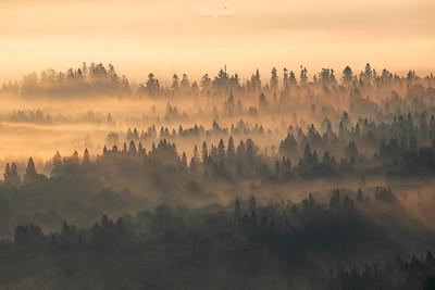 Bieszczady ©Mateusz Matysiak