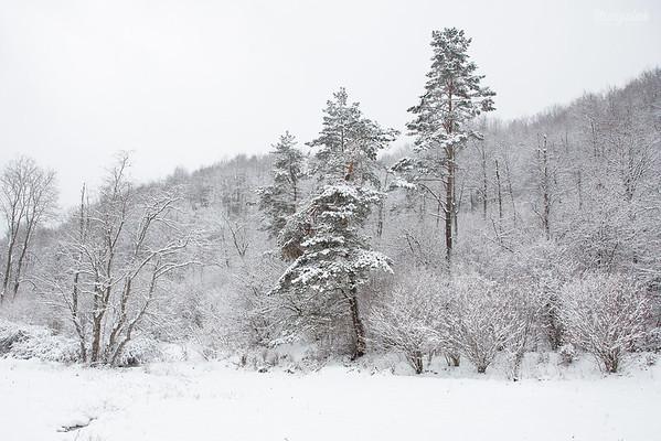 Zima w Bieszczadach ©Agata Katafiasz-Matysiak