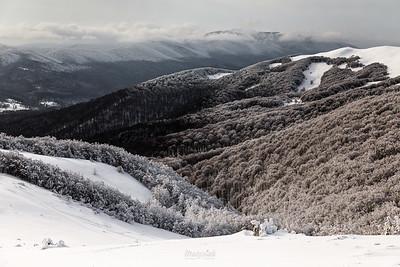 Zimowy widok z podejścia do Przełęczy pod Tarnicą w stronę Wołosatego Bieszczady ©Mateusz Matysiak