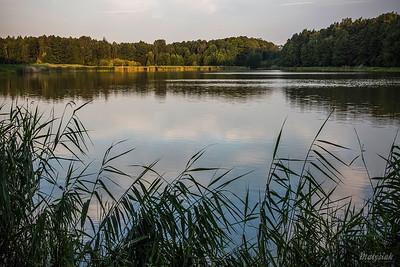 Staw Św. Anny Dolina Pisi Gągoliny, gm. Mszczonów ©Agata Katafiasz-Matysiak