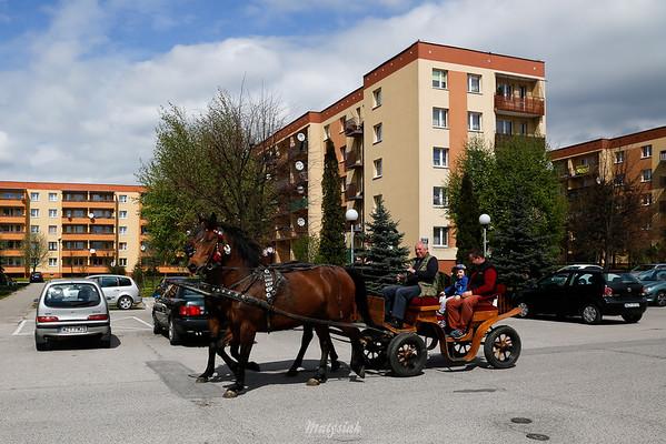 Bryczką ulicami Mszczonowa