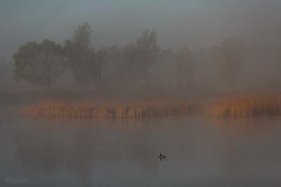 Dolina Pisi Gągoliny, Ziemia Chełmońskiego ©Agata Katafiasz-Matysiak