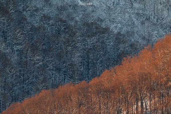 Zima na Otrycie Bieszczady ©Mateusz Matysiak