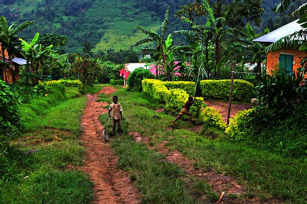 Bwindi Queen Elizabeth Nat Park Uganda