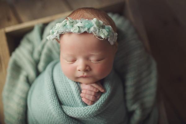 mikayla grace newborn mini