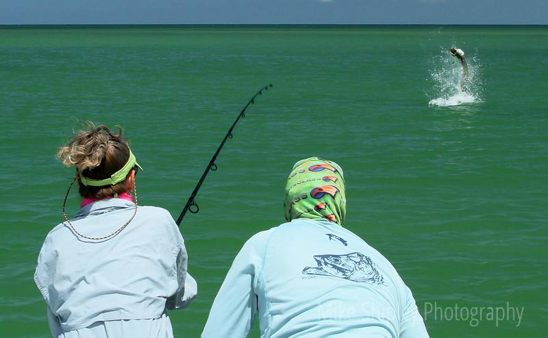 The Fight is ON.  Tarpon Fishing