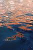 Venice_MC_06102011_004