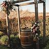 Sacramento_Wedding_photographer_Kate_Fretland_TM-596