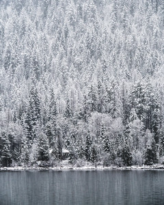 Kootenay Lake Snow