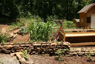 Garden - June.